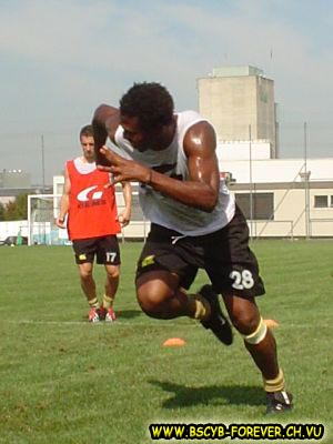 YB Training